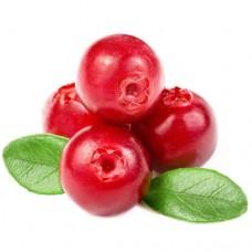 Vape-X Cranberry Flavour Concentrate 10ml